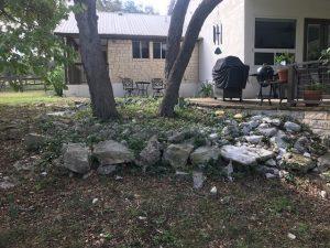 overgrown-planter-burnett-texas